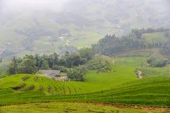 Padieveldterrassen van Sa-Pa in Vietnam Stock Foto's