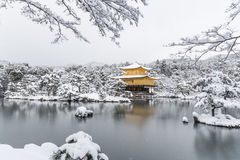 Padiglione dorato di Kinkakuji del tempio con la caduta della neve Fotografie Stock