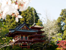 Padiglione giapponese nel giardino di tè giapponese Immagini Stock
