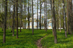 Padiglione nel parco del ` s di Catherine in Tsarskoe Selo attraverso il legno Fotografia Stock Libera da Diritti