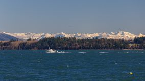 Padilla Bay Winter Landscape royalty free stock image