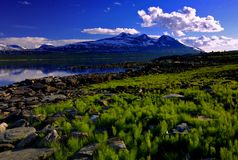 Padjelanta national park. Mountain covered with snow in padjelanta national park in sweden with lake Royalty Free Stock Photography