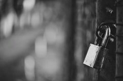 padlock Стоковое Изображение RF