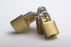 Padlock group. Bunch of padlocks locked joined together royalty free stock photography
