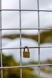 Padlock verschlossenes auf Zaun mit flachem Fokus - Vertikale Lizenzfreie Stockbilder