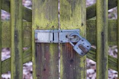 Padlock on Weathered Wooden Gate royalty free stock images