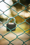 Padlock on wire netting.  Stock Photography