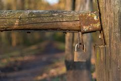 Padlock on a wooden gate with a footpath into the forest in the royalty free stock images