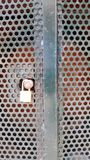 Padlocked metal cupboard with round cutout holes. royalty free stock photography