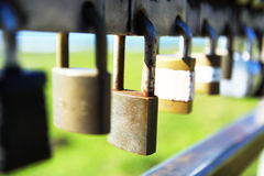 Padlocks chained on a gate. Close up Royalty Free Stock Photo