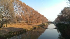 Padova in autumn, leaves falling Royalty Free Stock Photography