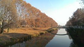 Padova in autunno, caduta delle foglie Fotografia Stock Libera da Diritti