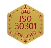 Padrão do ISO 30301 Fotografia de Stock