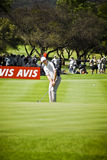 Padraig Harrington no 1? verde - NGC2010 Foto de Stock Royalty Free