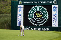 Padraig Harrington - Putting Out - 17th. Padraig Harrington putting out on the 17th green Stock Image