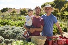 Padre With Adult Son y nieto que trabaja en la asignación Foto de archivo libre de regalías