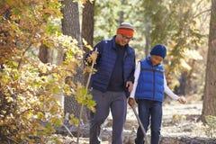 Padre asiático e hijo que caminan en un bosque, cierre para arriba Fotografía de archivo