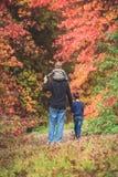 Padre che cammina con i bambini nel parco di autunno Immagine Stock