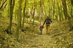 Padre e figlio che camminano nella vista posteriore della foresta di autunno immagine stock