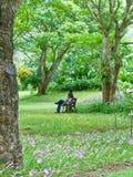 Padre e figlio che si siedono su un banco. Fotografie Stock
