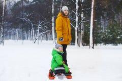 Padre e figlio che sledding nel parco di inverno Fotografia Stock Libera da Diritti