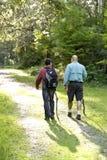 Padre e figlio di retrovisione che fanno un'escursione in legno sulla traccia Fotografia Stock Libera da Diritti