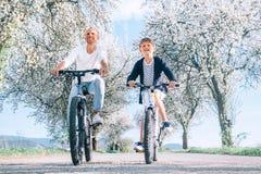 Padre e figlio divertendosi quando guidano le biciclette sulla strada campestre sotto gli alberi del fiore Immagine sportiva sana immagini stock