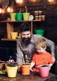 Padre e figlio Giorno di padri giardinieri felici con i fiori della molla Natura barbuta di amore del bambino del ragazzino e del immagine stock libera da diritti
