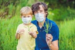 Padre e figlio in una maschera medica a causa di un'allergia al ragwee Fotografia Stock Libera da Diritti
