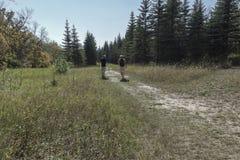 Padre e hijo adolescente que caminan en el bosque en un día de verano caliente Imagenes de archivo