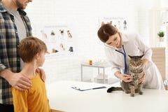 Padre e hijo con su veterinario que visita del animal dom?stico Gato de examen del doc. fotos de archivo