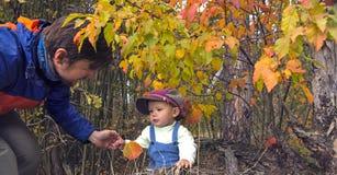 Padre e hijo en bosque del otoño Imágenes de archivo libres de regalías