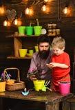 Padre e hijo jardineros felices con las flores de la primavera Riego del cuidado de la flor Fertilizantes del suelo Hombre y niño imagen de archivo libre de regalías