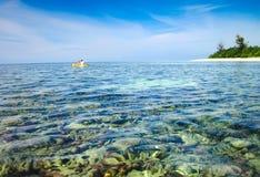 Padre e hijo kayaking al lado de la isla coralina Foto de archivo