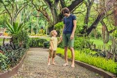 Padre e hijo que caminan en un pavimento de adoquín texturizado, Reflexolog Foto de archivo libre de regalías