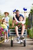 Padre felice e suo il figlio che giocano con una carriola mentre ragazza e sua madre che li guardano nella serra Fotografia Stock Libera da Diritti