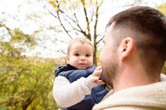 Padre irreconocible con su hijo en bosque del otoño Fotos de archivo libres de regalías