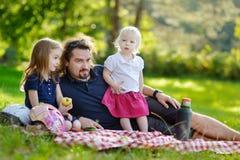 Padre joven y sus hijas que tienen una comida campestre Fotografía de archivo