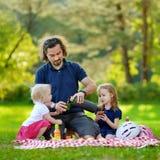 Padre joven y sus hijas que tienen una comida campestre Foto de archivo