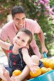Padre que empuja a la hija en carretilla Imagenes de archivo