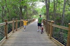 Padre Son Forest Wooden Bridge Fotografie Stock Libere da Diritti