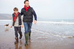 Padre And Son Walking en la playa del invierno fotografía de archivo libre de regalías
