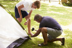 Padre And Teenage Son que pone encima de la tienda en acampada Fotos de archivo