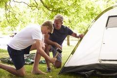 Padre And Teenage Son que pone encima de la tienda en acampada Foto de archivo