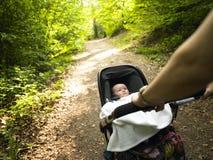 Padre y bebé que toman una caminata en las maderas Imagen de archivo libre de regalías