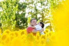 Padre y muchacho en un campo de los girasoles Imagen de archivo