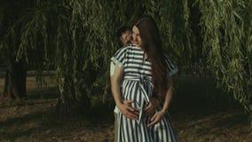Padres cariñosos que cuentan con al bebé que abraza en parque almacen de metraje de vídeo