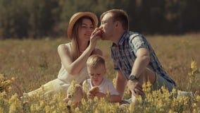 Padres con su pequeño hijo adorable que se sienta en el campo que tiene comida campestre de la familia almacen de video