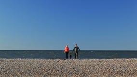 Padres jovenes con su niño joven en una playa metrajes