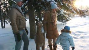 Padres jovenes con un niño que se coloca en bosque almacen de video